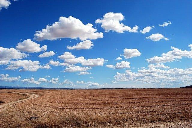 diritto prelazione terreni agricoli